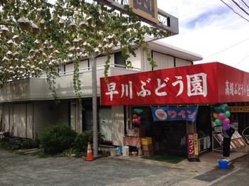 山梨県勝沼ぶどう狩り1.JPG
