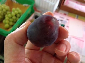 超美味しい勝沼のぶどう1.JPG
